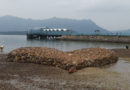 【香港】漫遊馬鞍山海之心。烏溪沙沙灘