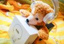 【電子科技】純白冬日之音。Sudio Regent無線貼耳式耳機
