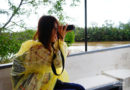【沙巴】長鼻猴+螢火蟲一日遊。沙巴遊旅行社 (下)