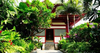 【新加坡】來一場心靈之旅。走進牛車水佛牙寺龍華院