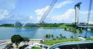 【新加坡】登上高空Singapore Flyer。欣賞繁華城市景觀