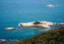 【香港】東邊恬靜海岸輕鬆遊。龍蝦灣及大嶺桐