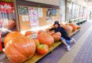 【鳥取】尋找食材的原味。鳥取港海鮮市場かろいち品嚐真鮮味
