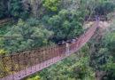 【台灣】感受瀑布的宏偉。小烏來天空步道及風景區