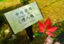 【台灣】平溪線鐵道之旅。日式木造車站菁桐
