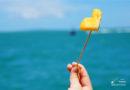 【芭堤雅】往碧海藍天出發。愛上Koh Larn Island