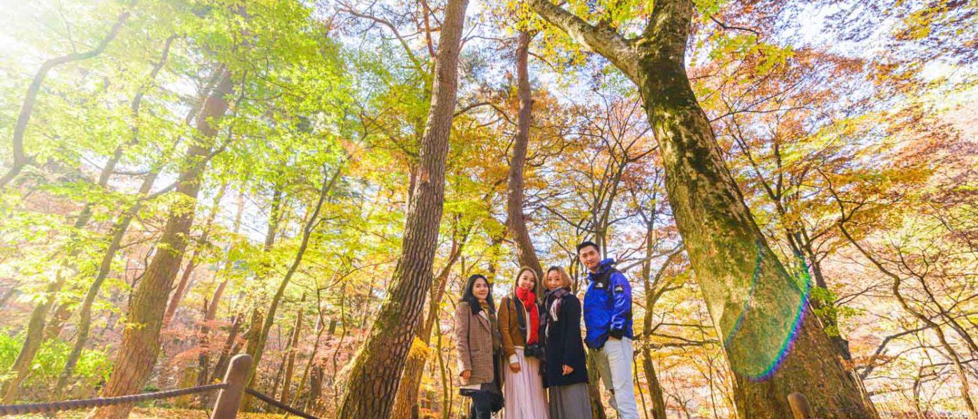 【忠清北道】捉住秋天的尾巴。俗離山法住寺漫天紅楓