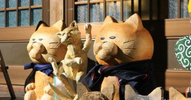 【山口】萩市深山中的雲林寺。貓奴們來朝拜喵星人
